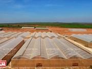 """""""小沙漠""""上的农业生产(组图)"""
