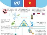 图表新闻:越南是联合国积极奉献及担当的一员