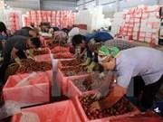 2015年越南边贸额270亿美元