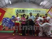 越南参加在新加坡举行的第九届狮王争霸赛