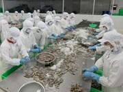美国继续对越南虾类征收反倾销税