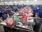 TPP助推越南加速融入进程