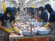 越南欢迎美国众议院通过取消对越南鲶鱼检验程序计划的决议