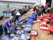 广治省为渔民恢复正常的生计创造便利条件