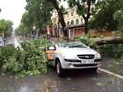 今年首场台风来袭越南 河内市等影响严重