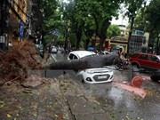 """越南北部各省市受一号台风""""银河""""严重影响救灾恢复重建工作有序展开"""