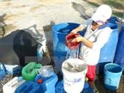 联合国儿童基金会会为越南旱灾和海水入侵灾害恢复工作提供资助