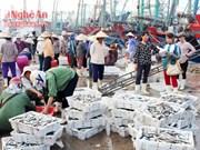 乂安省加强海洋资源保护工作