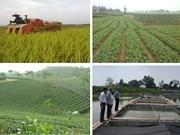 富寿省出资2300亿越盾促进农业可持续发展