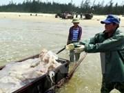 广义省向海上遇险渔民提供34亿多越盾的援助