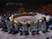 越南希望继续在联合国发挥更大作用并拥有更大发言权