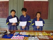 越南政府副总理张和平:绝不能使边境地区成为毒品交易的集散地