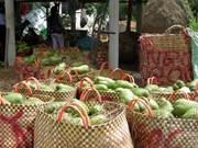 越南南部前江省特产刺果番荔枝价格猛涨