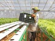 日本企业考察越南河南省投资环境