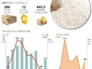 图表新闻:越南上调2017年大米出口目标