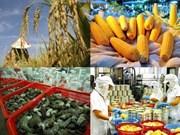 五年来越南出口额保持较好的增长态势