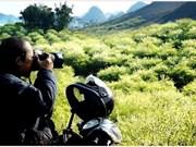 木洲——摄影爱好者的目的地