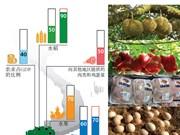 九龙江平原地区的农业生产情况