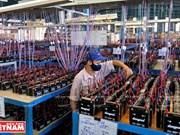 越南一流电池和电瓶厂家PINACO