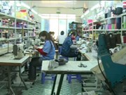 越南着力推进皮革制鞋业深入参与全球价值链