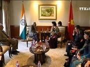 越南国会主席阮氏金银对印度进行正式访问