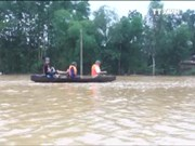 越南致力于应对气候变化