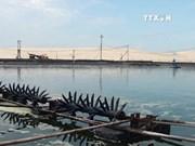 2016年越南对欧盟虾类产品出口额增长7.5%