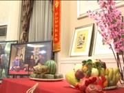 越南驻中国大使馆举行2017丁酉年春节见面会