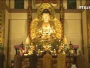年初去寺庙烧香拜佛——越南人的美俗