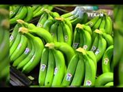 越南香蕉在世界各国市场上畅销