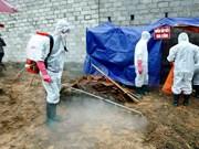越南严防亚型H7N9禽流感病毒传入境内