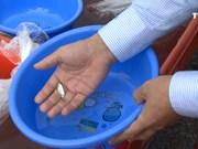 越中两国举办北部湾渔业资源联合养殖放流与养护活动