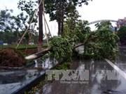 第十号台风对越南中部各省造成严重损失