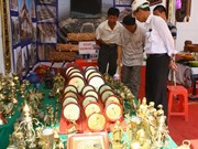 越南农村工业产品努力打造品牌
