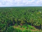 槟椥省旅游业迈入快速发展阶段