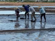 越南中部地区渔民因天气恶劣难以展开捕捞作业