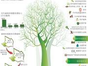 图表新闻:2018年越南森林环境服务费收入预计达 2万亿越盾