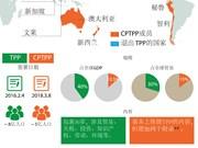 图表新闻:TPP 与 CPTPP 有什么不同?
