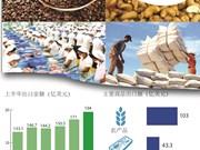 图表新闻:上半年全国农林水产品出口额达190亿多美元