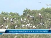 同塔省寻求措施保护鸟西国家公园生物多样性