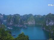 越南外交行业应着力发挥文化外交作用