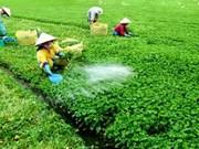 越南农产品受到太多专业机构的监管