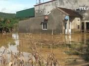 乂安省积极做好台风灾后重建工作
