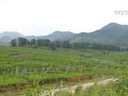 改善土壤政策  加大外企对农业的投资力度