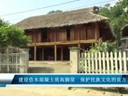 建设仿木混凝土质高脚屋  保护民族文化的良方