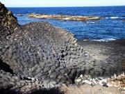 富安省国家名胜区-石盘礁附近的新景点迎客