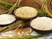 越南大米以良好品质赢得国际市场的青睐