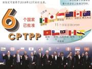 图表新闻:CPTPP将于2018年年底生效