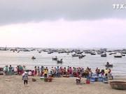 岘港渔民出海满载而归