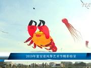 2019年富安省风筝艺术节精彩纷呈